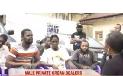 Male Private Parts Dealers Arrested In Kogi State (Photo)