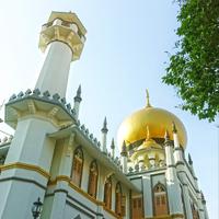 Arab Street (kampung Arab) adalah salah satu tempat di Singapore yang kental ciri Timur Tengahnya.