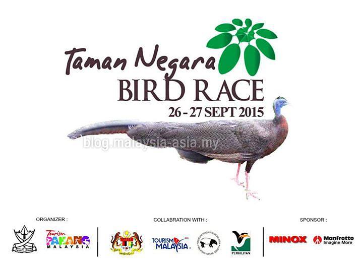 Taman Negara Bird Race 2015