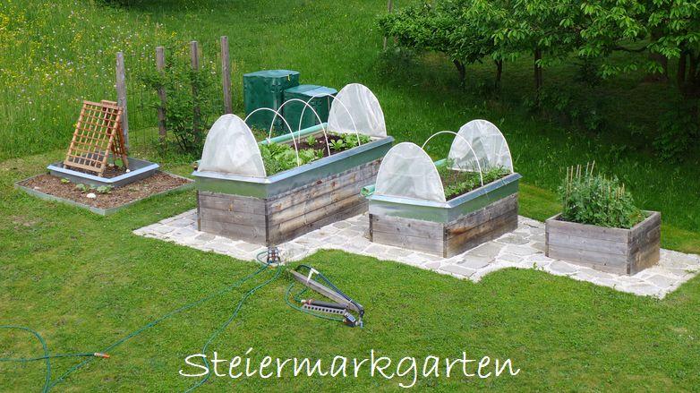 Nutzgarten-mit-neuem-Kürbisbeet-Steiermarkgarten