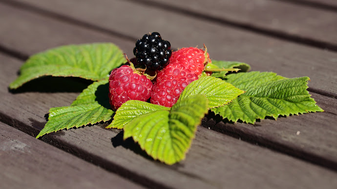 Wallpaper: Forest Fruits. Raspberries and Blackberry