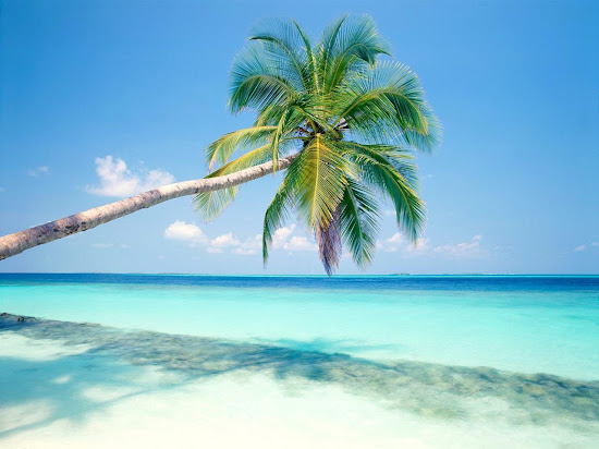 Que significa soñar con isla