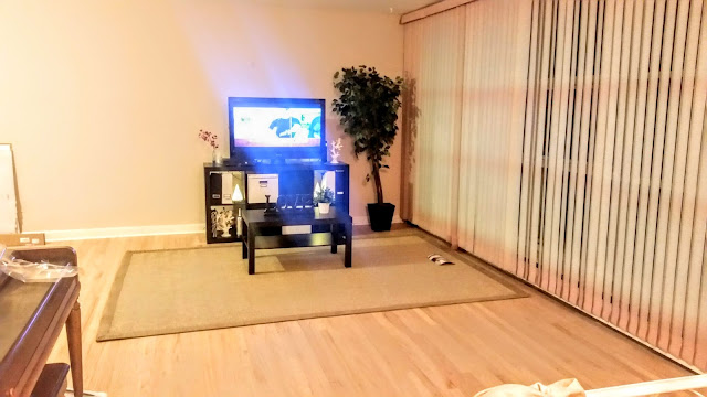 living room before tan rug wood floors ikea furniture tv stand coffee table piano vertical blinds