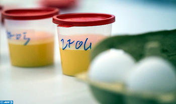 البيض الملوث: لم يتم الترخيص بالمغرب لأي منتوج يعتمد على (الفيبرونيل) سواء في الزراعة أو منتجات الحيوانات المنزلية الموجهة للاستهلاك البشري