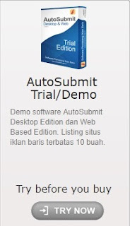 auto submit seo