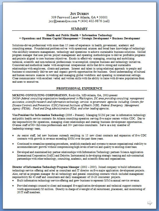 vice president information technology resume examples in