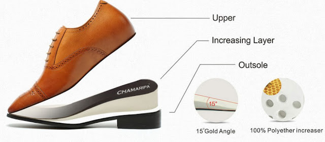 anatomy of chamaripa shoes