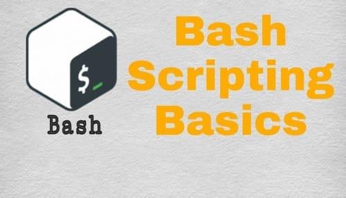 Bash Script, Bash Script Basics