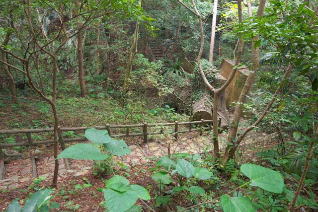 Stone trail through forest, Hedo, Okinawa