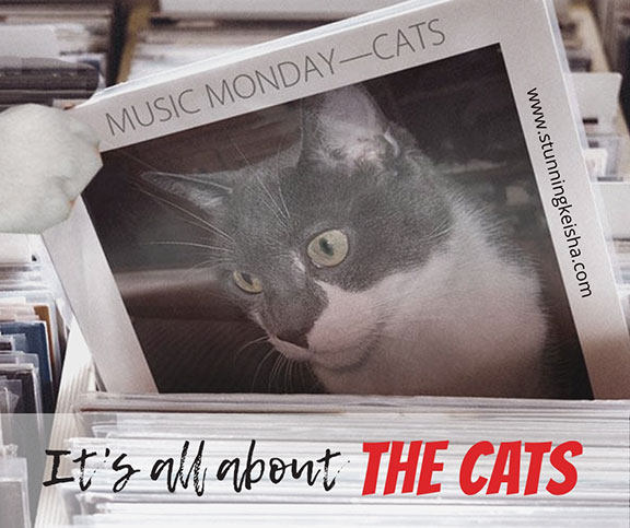 Music Monday—It's All About the Cats