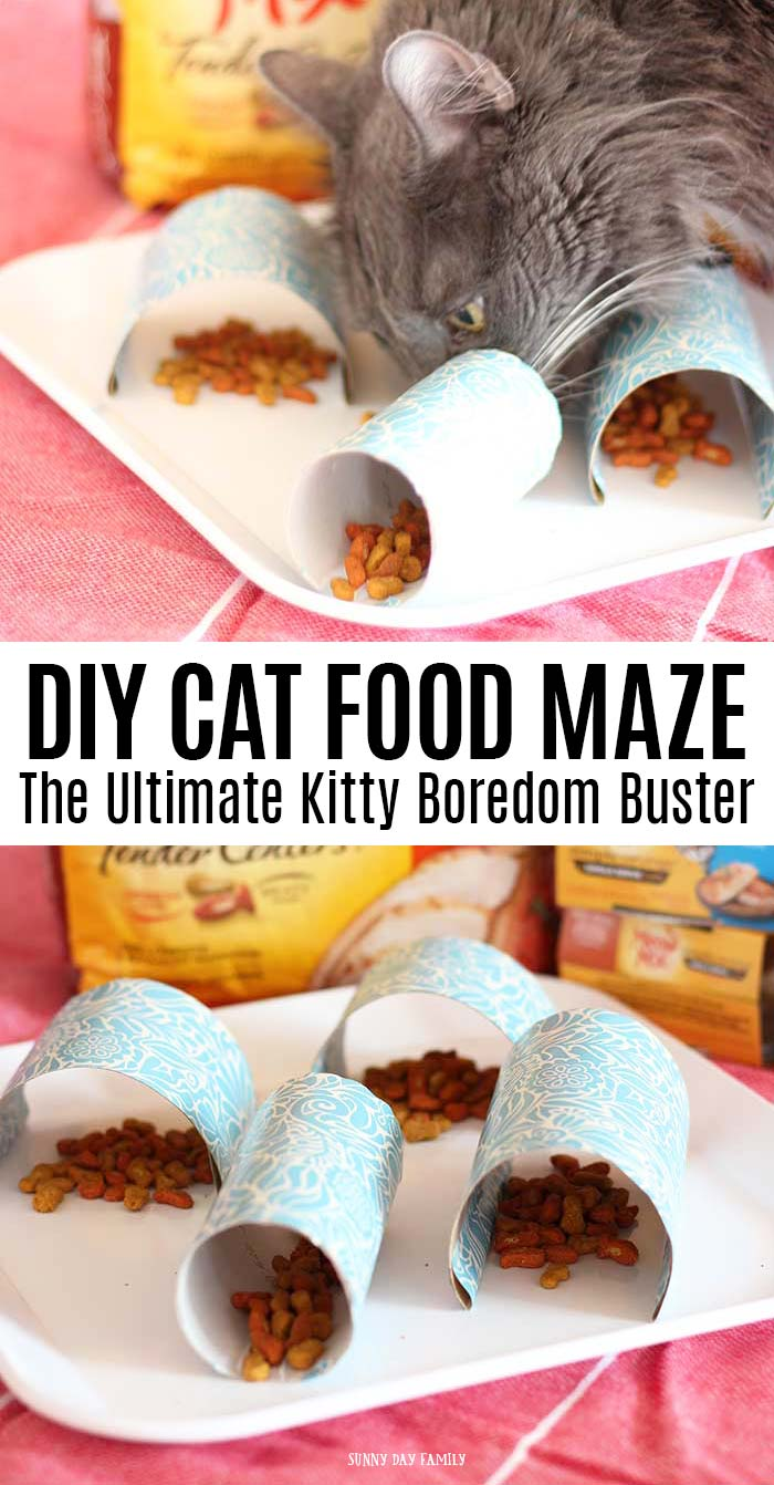 Make an easy cat food maze to keep your kitty from getting bored at mealtime! This is a fun cat boredom buster and a great way to keep indoor cats active. Cats love it and it is an easy DIY project for cats! #ad