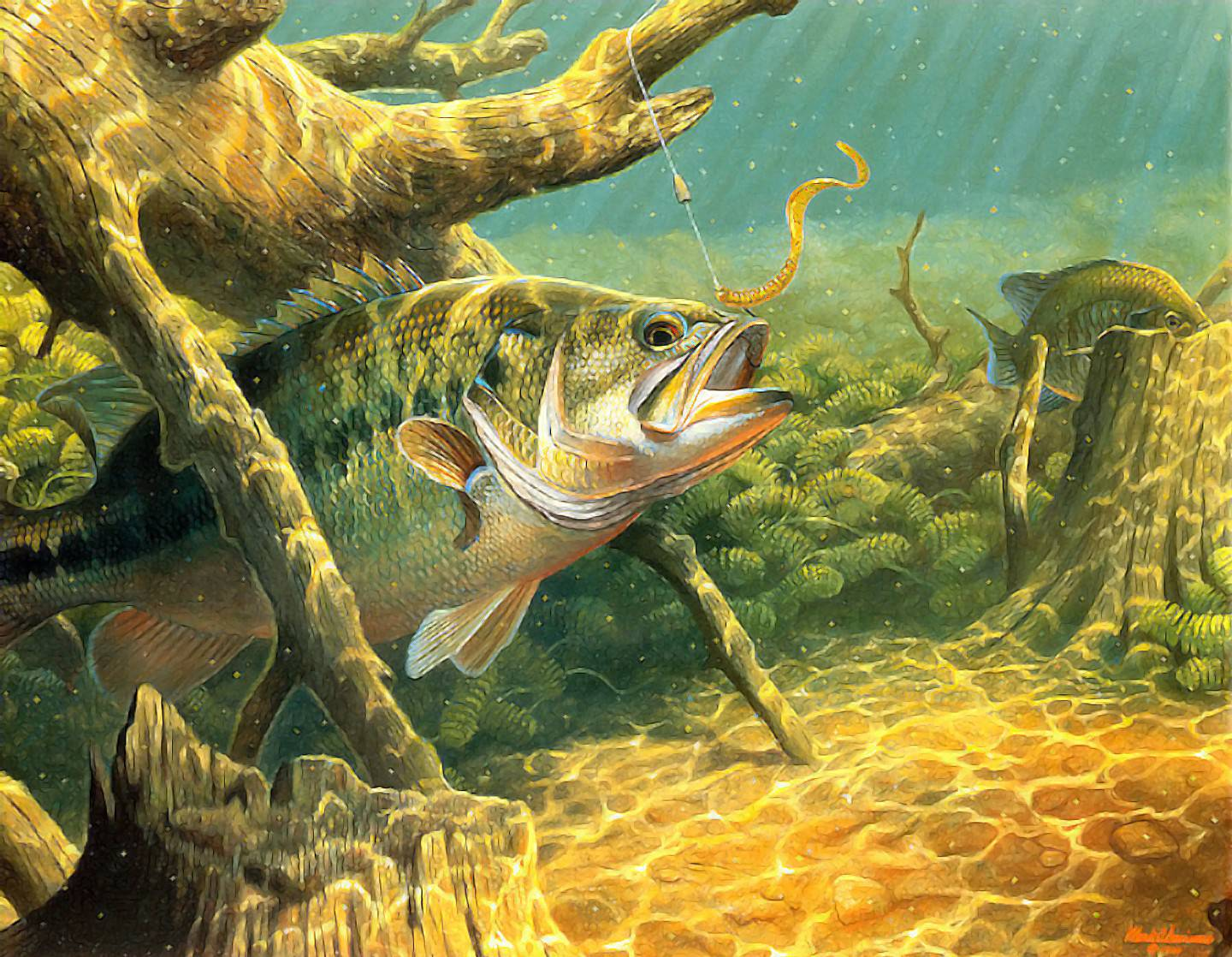 Fish R: Bass Fishing Wallpaper