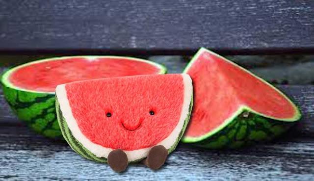 buah semangka terdiri dari air tetapi buah yang menyegarkan ini direndam oleh banyak nutr 10 MANFAAT BUAH SEMANGKA UNTUK PENYAKIT
