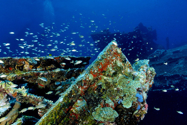 Aruba Dive Sites