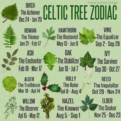 horóscopo celta das árvores