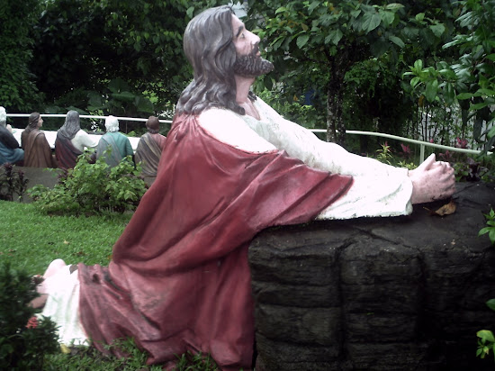 Image of Jesus Christ praying