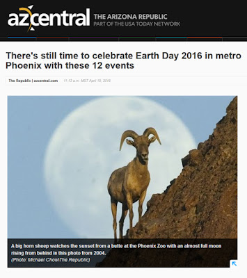 snapshot of azcentral web page for Earth Day events.  Photo of a big horn sheep by Michael Chow