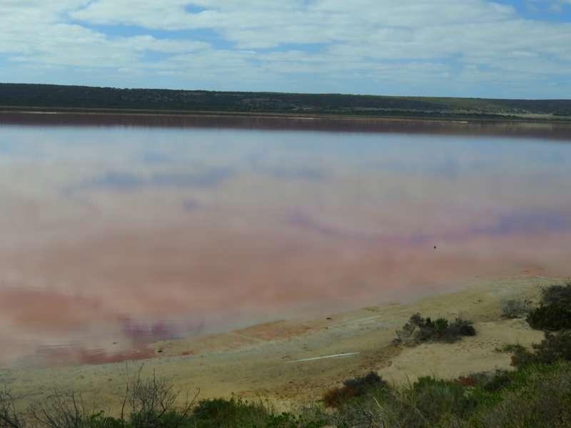 Hutt Lagoon a pink lake