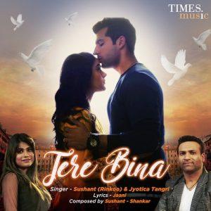 Tere Bina – Sushant Sharma (2018)