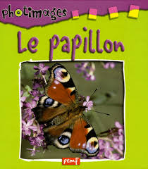 Le papillon, Photimages