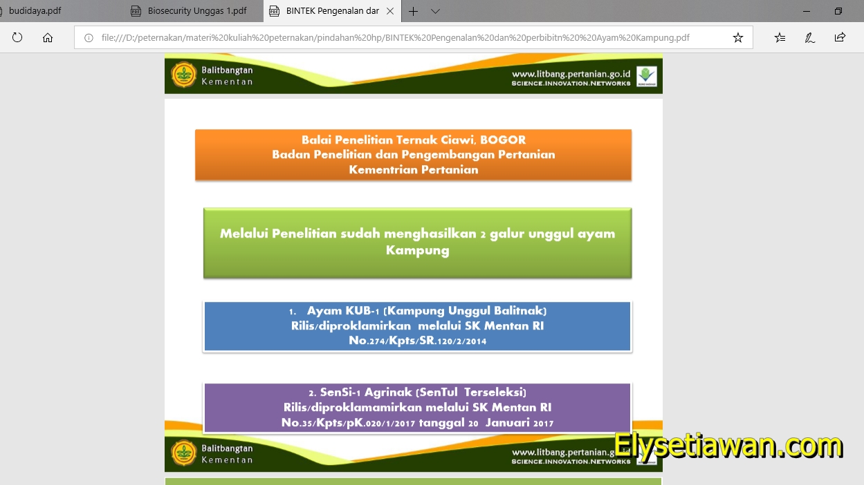 Download Materi Bimtek Ayam Kub Lengkap Peternakan Mas Ely Setiawan
