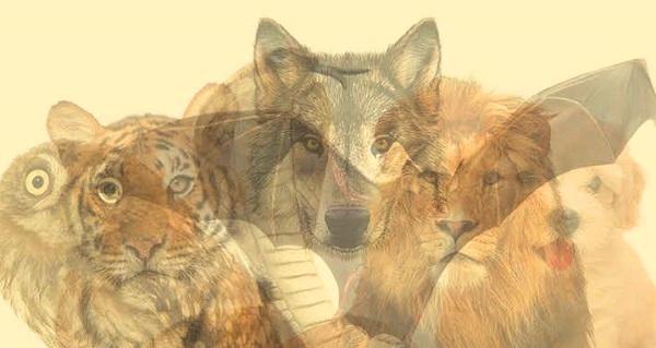 Первое животное которое вы увидите на картинке, расскажет всю правду о тайнах вашей личности!