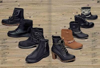 Botas  y botines Andrea 2016 : calzado de moda