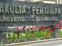 7+ Fakta Jurusan Teknologi Hasil Pertanian Universitas Brawijaya