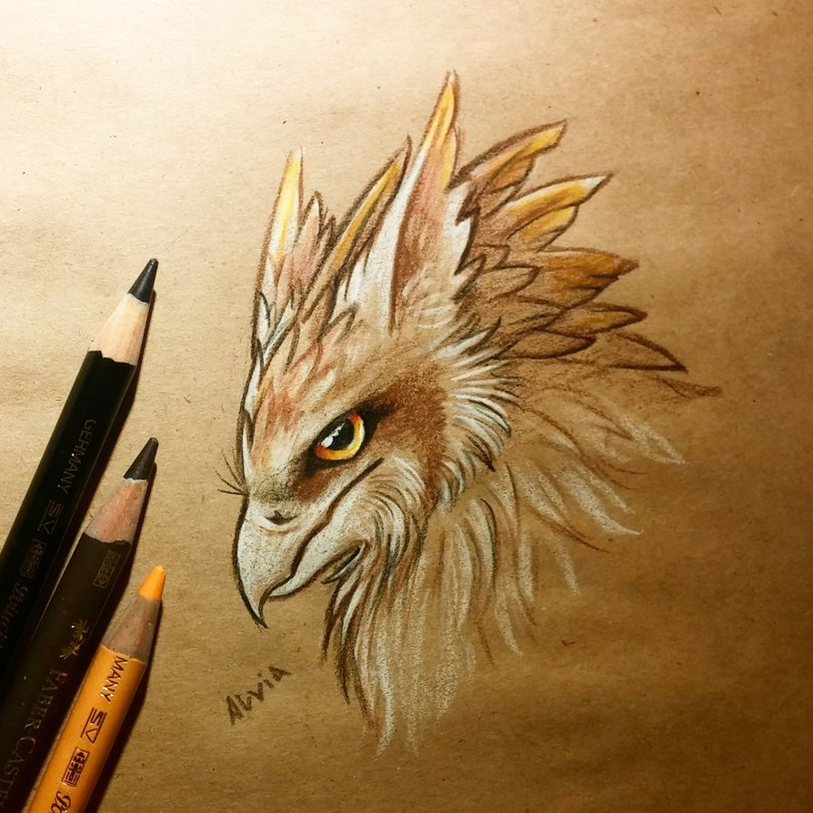 14-Young-Gryphon-Alvia-Alcedo-Dragons-and-other-Mythical-Magical-Creatures-in-Fantasy-Drawings-www-designstack-co
