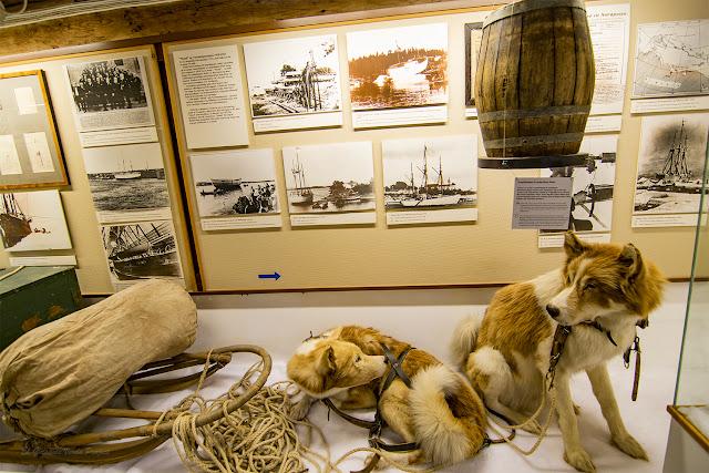 Perros de Trineo - Museo Polar, Tromso por El Guisante Verde Project