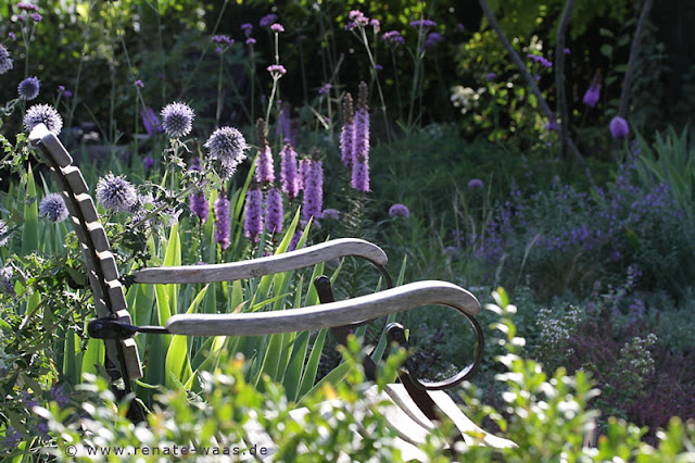 geniesser garten staudenbeet im august. Black Bedroom Furniture Sets. Home Design Ideas