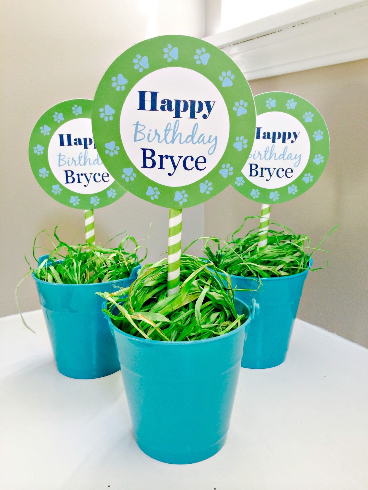 Birthday Centerpiece ideas