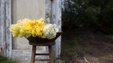 Cultivando flores e ilusiones. Cut Flower Garden, nuevo libro de Floret Farm