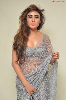Sony Charishta in Saree and style choli .XYZ Exclusive 26