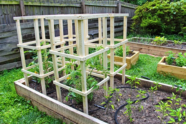 Some Like A Project Wooden Tomato Cages