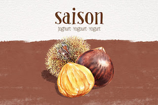 Chestnut Watercolor Illustration by the artist Irina Sztukowski