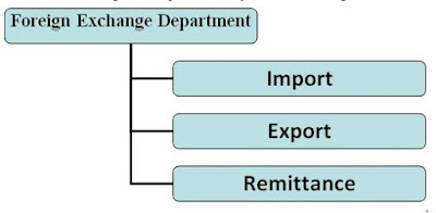 Functions of Foreign Exchange Department