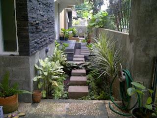 Contoh Taman Minimalis di Samping Rumah