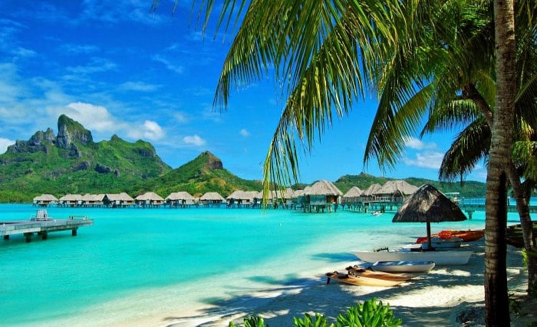 Khung cảnh xanh mát, sức sống tràn trề tại dự án biệt thự nghỉ sưỡng Sun Group Resort