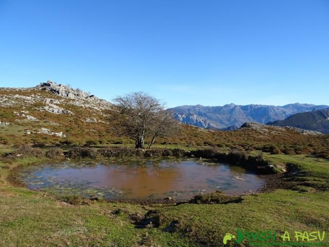 Laguna de Vega Castro
