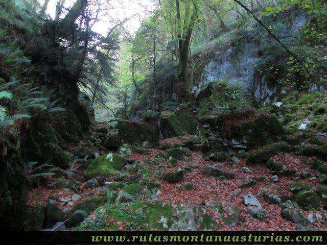 Ruta Pienzu por Mirador Fito y Biescona: Cauce Arroyo de la Biescona