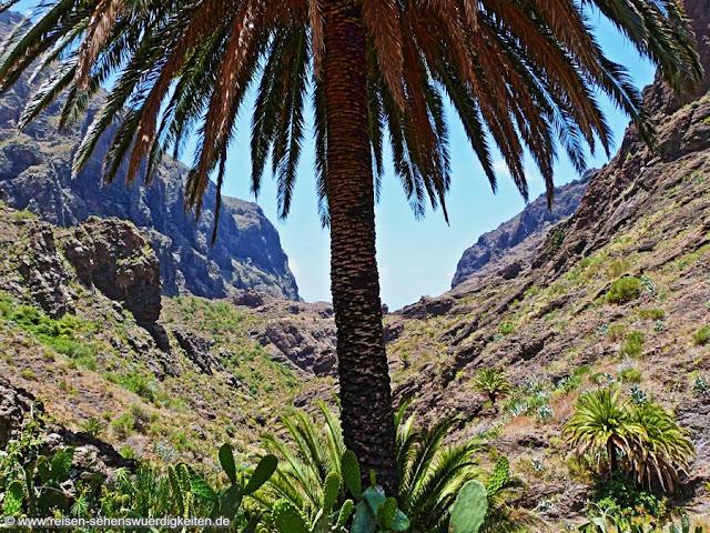 Ein tolles Ausflugsziel auf Teneriffa, Ausflüge nach Masca, Ausflug in die Mascaschlucht