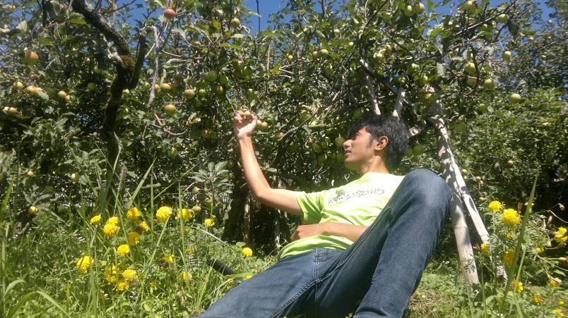 Wisata Kebun Apel Kota Batu Malang