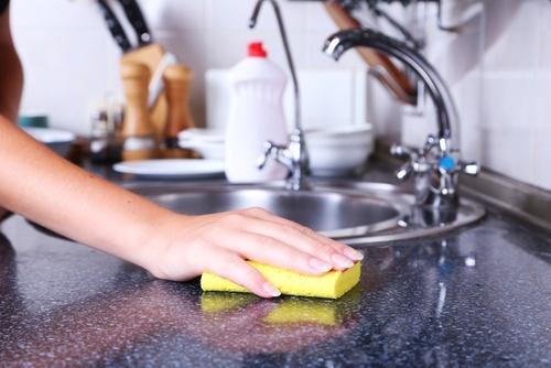 Substitua a espoja da cozinha semanalmente