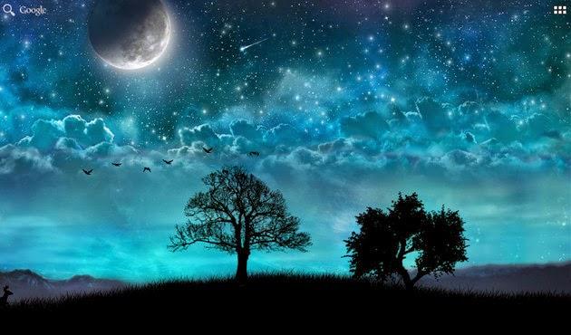 3d Fireflies Live Wallpaper Apk Dream Night Pro Live Wallpaper 1 5 3 Apk Apkradar