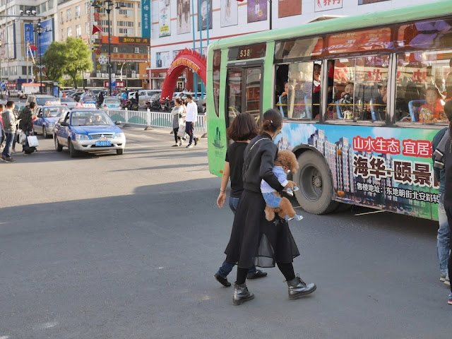 young woman carrying a poodle across a street intersection in Mudanjiang, China
