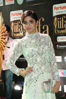 Poonam Kaur in Beautiful Floor Length Gown at IIFA Utsavam Awards 2017  Day 2  Exclusive 14.JPG