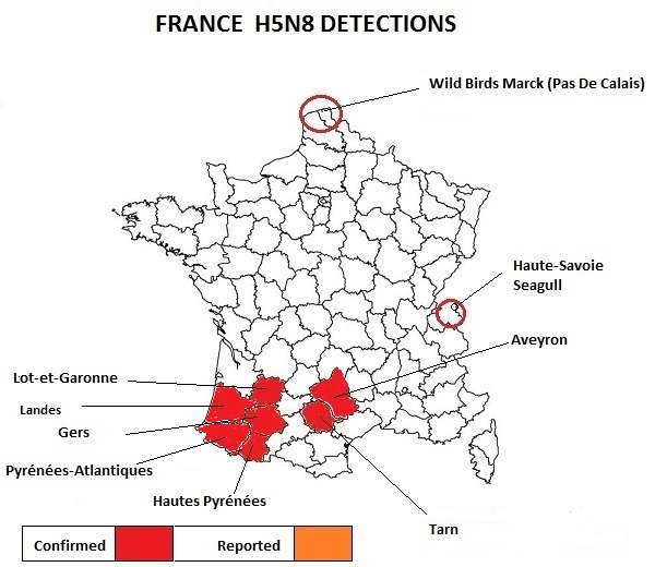 avian flu diary  france  moa reporting 4 new outbreaks of hpai h5n8