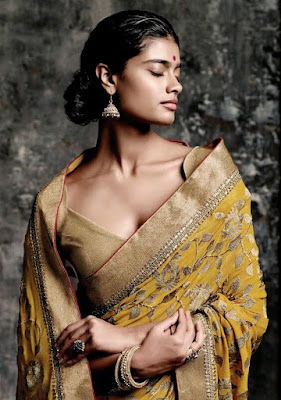Dusky Indian Model Girl In Full Embroidery Saree.