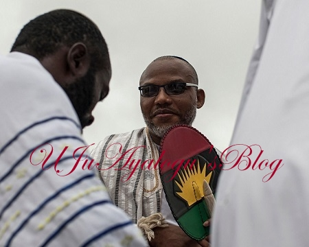 Igbos Are Not Jews - DNA Result Reveals Nnamdi Kanu's Juvenile Prank Used To Brainwash Followers
